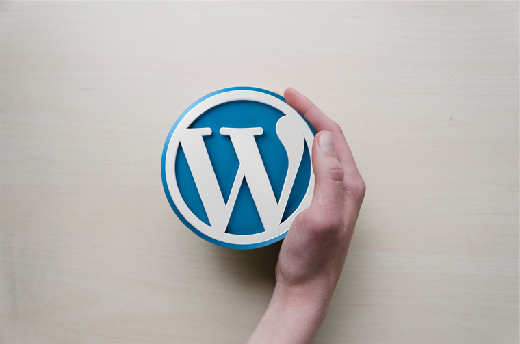 WordPress is number one in terms of best software for technical writers